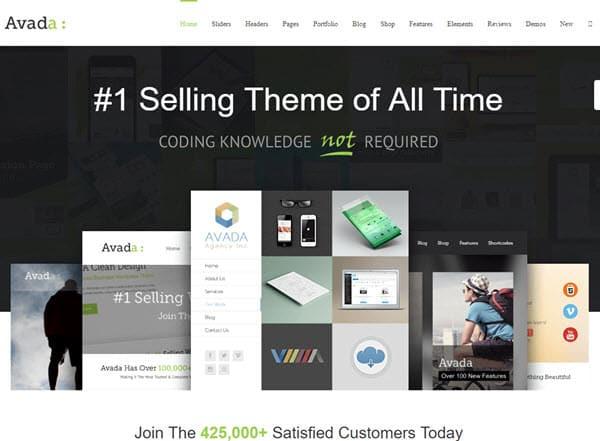 Avada SEO Friendly WordPress Themes
