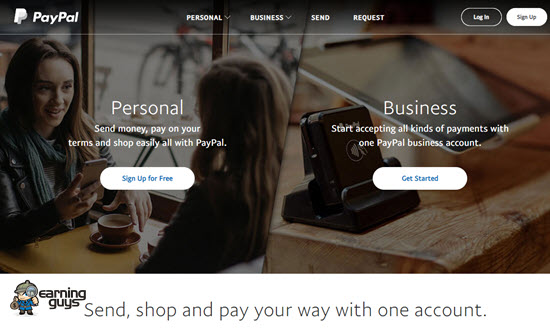 PayPal Online Payment System