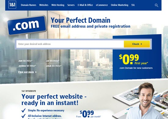 Popular Website Hosting