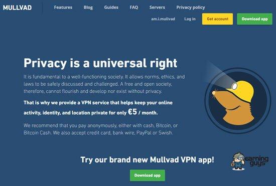 Mullvad VPN Service Provider