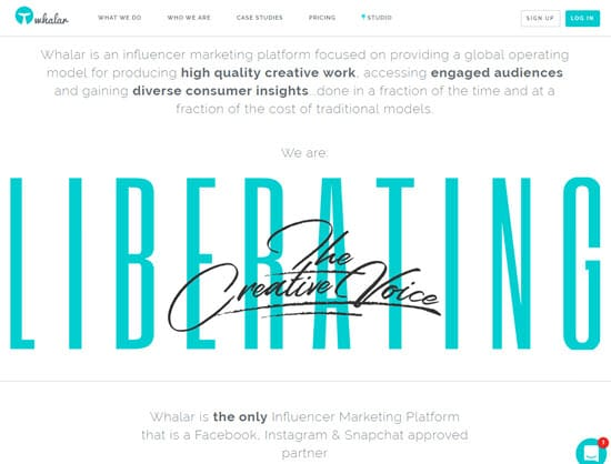 Whaler Influencer Marketing Tool