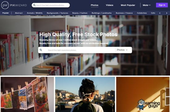Pikwizard - High-Quality Free Stock Photos